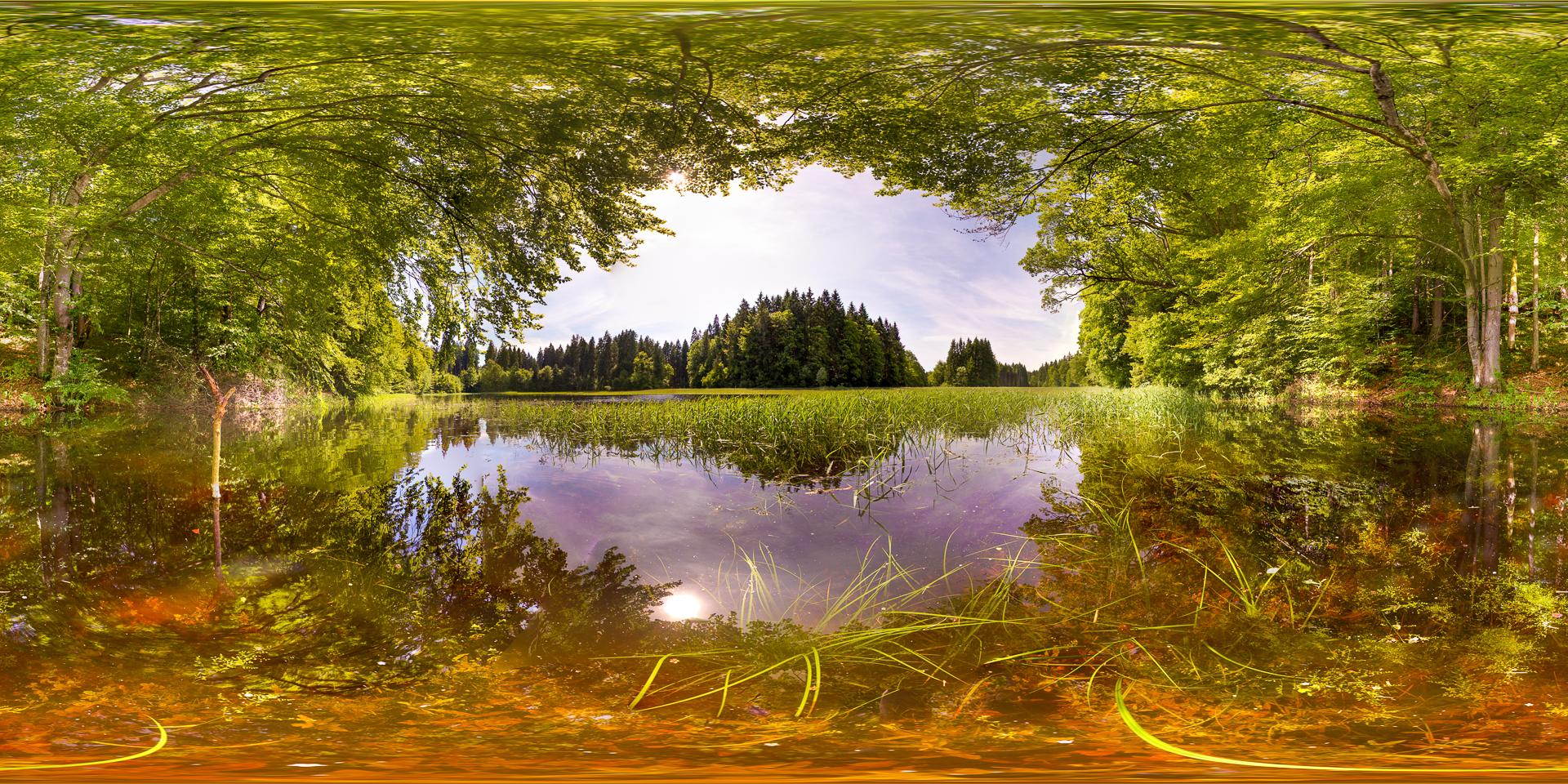 Wasserwiese